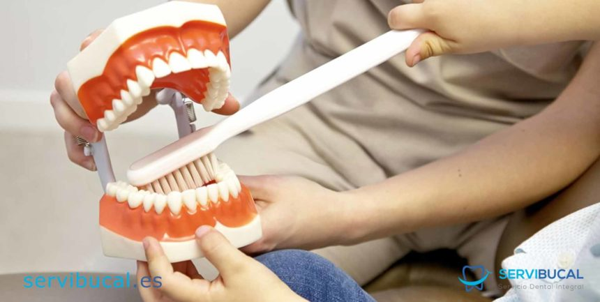 10 tipos de tratamientos dentales: Precios y características